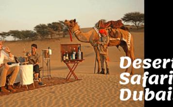 Spend time in Safari Desert