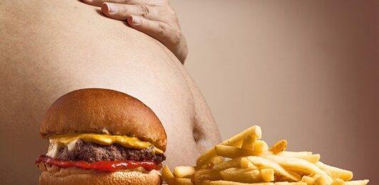 fat obesity