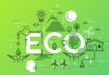 How to Start an Eco Friendly Business Online?
